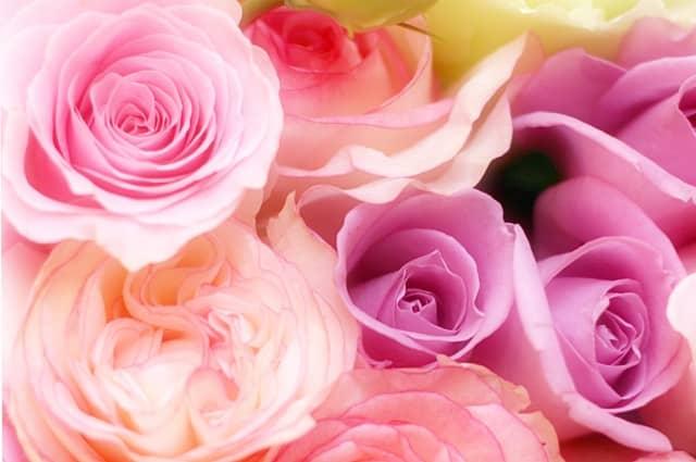 リビドーロゼの香り第一印象はお花の石鹸